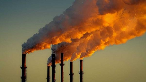 Preservar el medio ambiente es tarea colectiva: CEAC