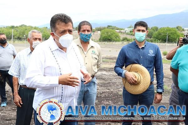 Arranca campaña de reforestación 2020 en Apatzingán