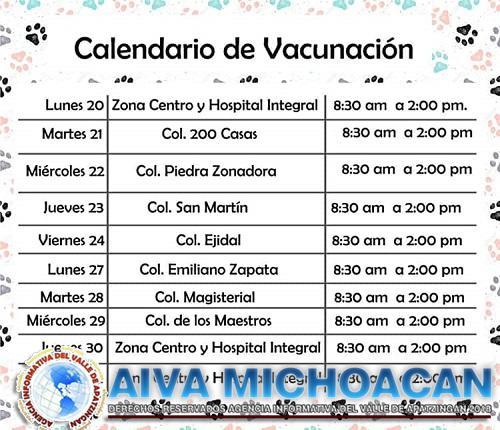 Gobierno de Arteaga presenta calendario de campaña antirrábica