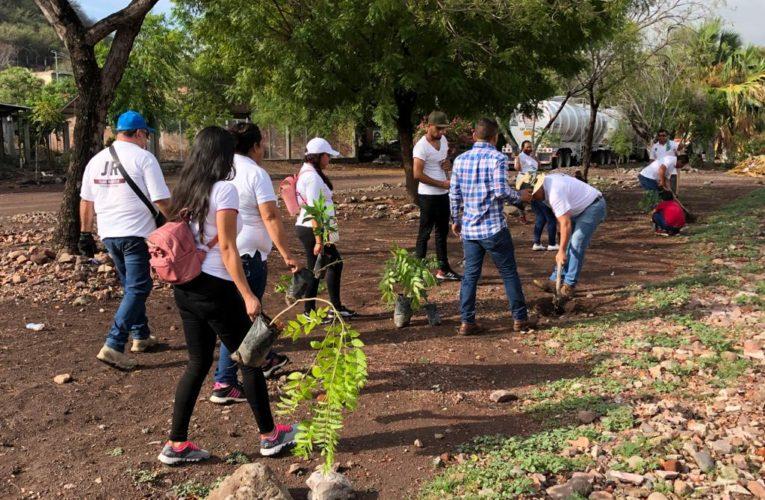 Encabeza el Regidor Juan Romero campaña de Reforestación en San Antonio