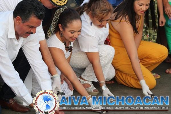 Por Covid-19, Expo Tortuga Marina 2020 será virtual